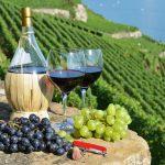 Top 5 wine regions of Italy
