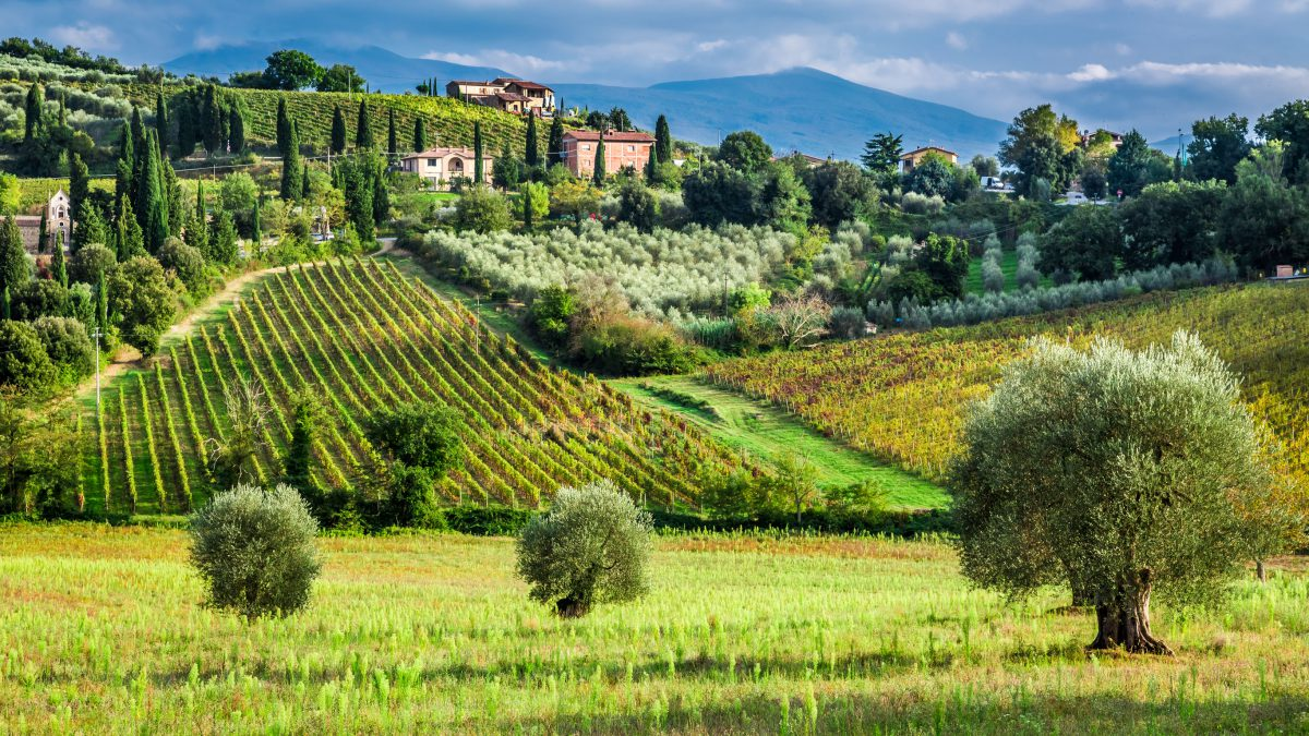 Harvest Season In Tuscany- Spending Good Time Outdoors